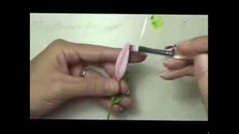 Hướng dẫn làm hoa đất - Lily