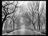 Vangelis - Metallic Rain