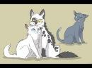 Пары котов воителей