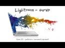 8 Lightroom с самого начала 02 Тоновая кривая Tone curve шг8