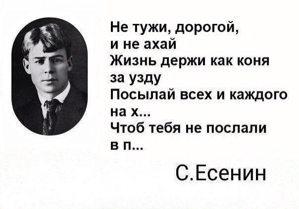 Алексей Митрохин | Москва