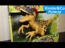 Раптор долина динозавров. Смотрите обзор игрушки динозавра.