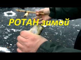 Ловля ротана зимой по первому льду-Как и на что ловить