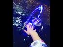 """🦄 Ариша 🌞 on Instagram Когда хочешь дотянуться рукой до фонтана в твоей голове такие мысли Озвучка Даниил Фурман """""""