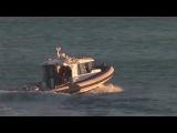Упобережья Австралии акула откусила серферу ногу Новости НТВ