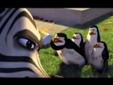 Мадагаскар/Madagascar (2005) Телеролик `Интриганы` (короткая версия)