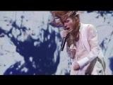 "Acid Black Cherry - ジグソー (2010 Live ""Re:birth"" at OSAKA-JO HALL)"