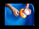 Морской Котик для купания Chicco (Чико)