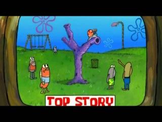 Спанч Боб Губка Боб  Новости Bikini Bottom мультфильм развивающий для детей