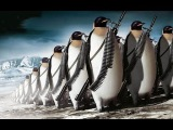 Kali Linux Hастройка после установки