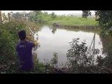 Рыбалка в Таиланде | Спиннинг | Змееголов