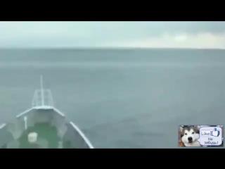 1 и 2 волна Цунами заснятое в Море - Редкие кадры