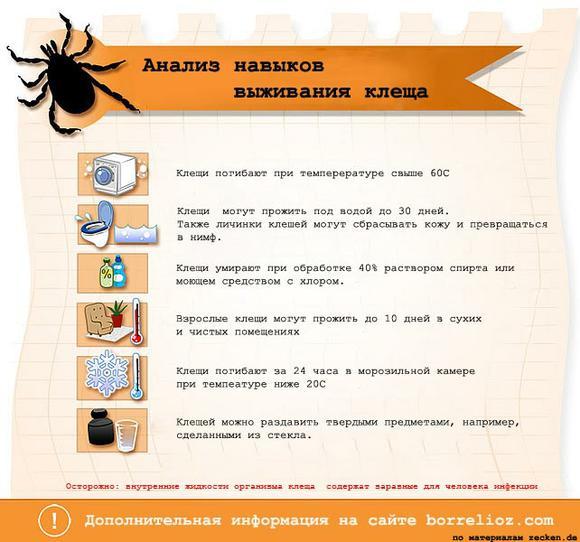 Илеоколостомия