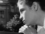 Мария Кодряну (за кадром) Песня о нежности