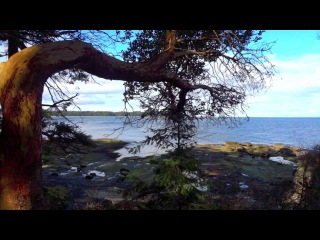 ♫ Relaxing Music Ocean - Soft Gentle Harp, Piano & Guitar Instrumental Chill Out -