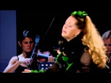 Нино Катамадзе &amp Insight - Land of Flowers (GREEN Line)