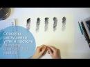 Способы растушевки угля и пастели (наглядная демонстрация)