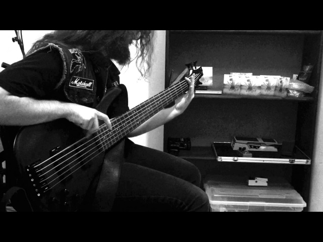 Vulvodynia | Drowned In Vomit | Bass Playthrough