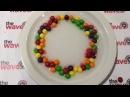 Siany's Skittles Experiment