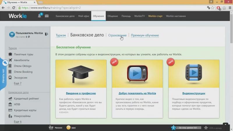 Интернет-работа с крупнейшими российскими компаниями в сферах туризма, банковского дела, страхования. Работа официально по гражд