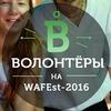 Волонтерское движение на WAFEst 2016