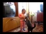 Мама-кошка забирает котёнка у ребёнка.