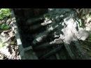 Павшие Солдаты на поверхности и в воронках, Раскопки Второй мировой / Searching relics of WW2 N 55