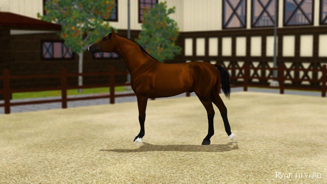 Регистрация лошадей в RHF 2 - Страница 5 T_2t_XDrmXk
