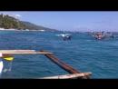 Купание с китовыми акулами, Филиппины 2016 Миронич