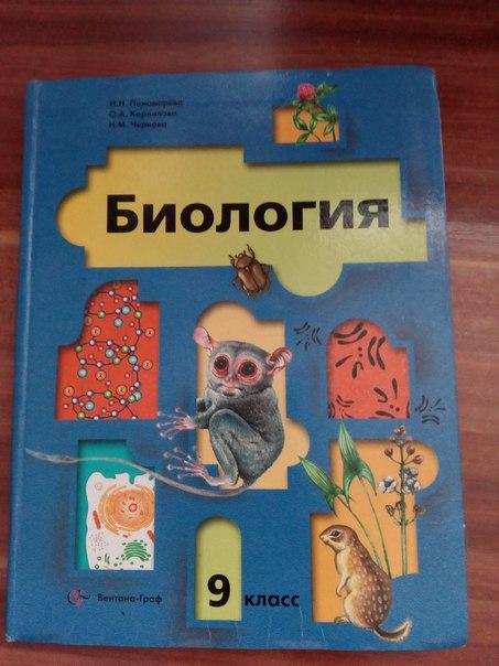 учебник в 5 класс математика