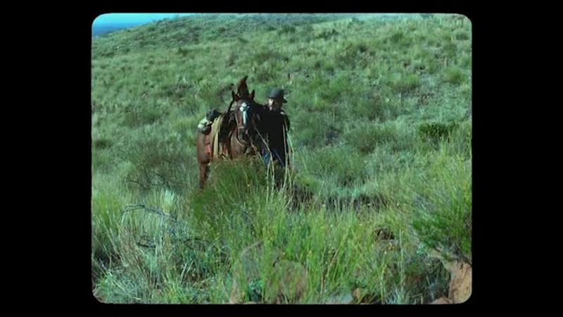 Hayal.Ulkesi.2014.TR.DVDRip.XviD.www.filmindir.gen.tr