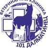 """Ветеринарная клиника """"101 Далматинец"""""""