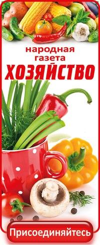 выращивать дача рецепты Огород