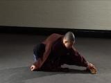 Shaolin Warrior - The Way of Qi Gong