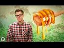 Как пчёлы делают мёд | Озвучка DeeAFilm