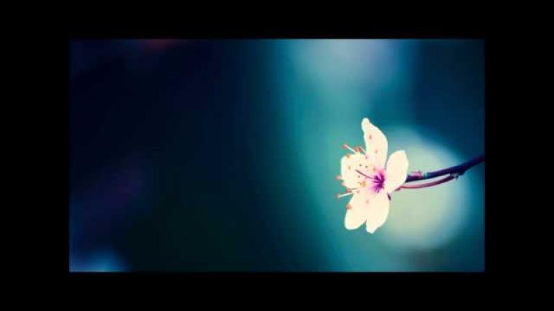 Alexander Volosnikov - A Whiff Of Spring