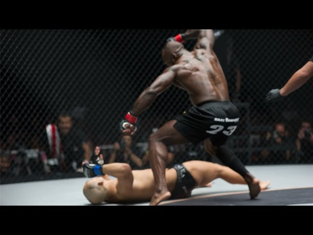 NEW 2015 MELVIN ''No Mercy'' MANHOEF Highlights Knockouts MMA