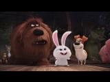 Тайная жизнь домашних животных - Кролик Снежок