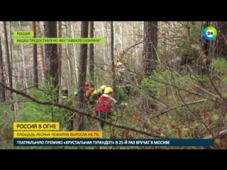 За сутки площадь природных пожаров в России выросла на 7%