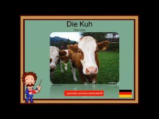 #1: LEARN GERMAN: FARM ANIMALS / DEUTSCH LERNEN: AUF DEM BAUERNHOF