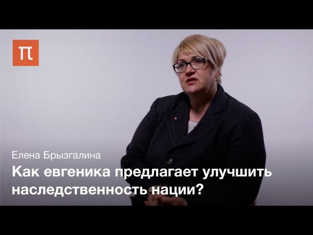 История евгеники — Елена Брызгалина