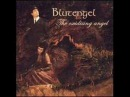 Blutengel - The Oxidising Angel