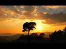 Vide Cor Meum a beautiful piece of music
