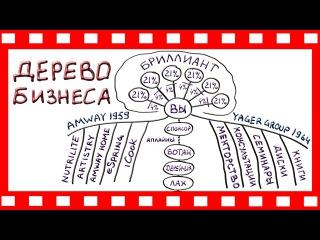 Amway: ДЕРЕВО БИЗНЕСА   система Декстера Ягера Yager Group