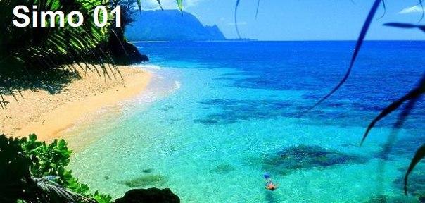 صور جزر هاواي Hawaii بامريكا الجنوبية Px9NFig-buY.jpg