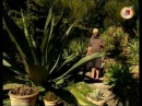 Зачарованные сады ч 16