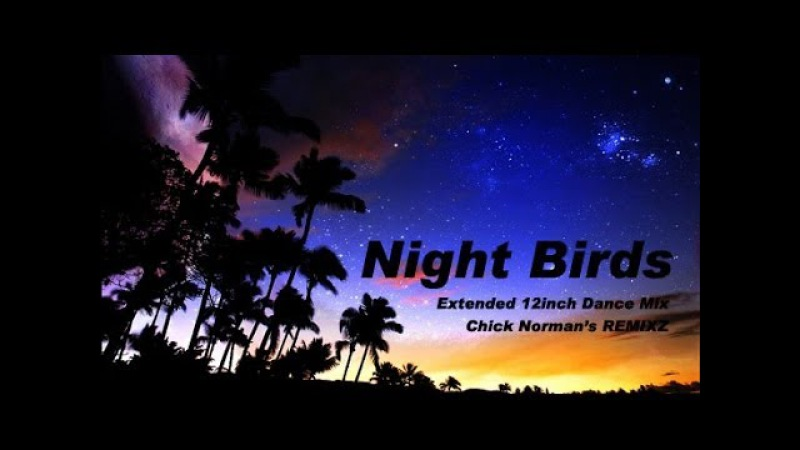 Night Birds -Extended 12inch Dance Mix- Shakatak