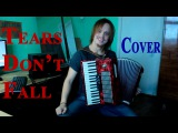 Bullet for my valentine - Tears Don't Fall (accordion cover)