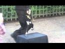 Танцующие куклы в Летнем саду Петербурга часть 2 Майкл Джексон Full HD 1080p