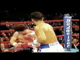 Arturo Gatti vine __ Boxing Vines